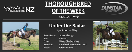 "Radar was trained by David Haworth of Foxton and won a total of $175 from his four race day starts. After retiring from the track Radar landed on his feet with rider Grace White, a student from Wairarapa. Together with the striking 17hh Faltaat gelding they are starting to form an impressive partnership. Grace and Radar have evented to 95cm, show jumped to 1.10m and competed in the dressage arena up to Level 3.Although Radar is a large horse Grace describes him as the ""sweetest' and she would trust any kid to ride him knowing they would be well look after by the gentle giant. Grace goes on to say, ""he has it all, good looks, movement, presence and an affectionate nature."" It is no surprise Radar has gained a fan club from people simply meeting him.Grace is hoping to produce Radar to 1* level eventing / Pony Club Champs mount, he is her second gelding by Faltaat, the first was her first hack and looked identical to Radar to people who didn't know them!"